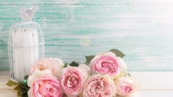 candle,wood,vintage,roses,цветы