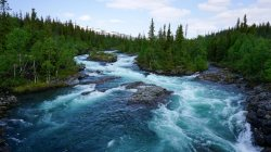 river,scenery,blue,forest