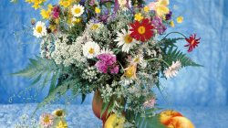 flowers,colourful,vase