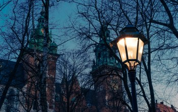 Poland,Krakow,dusk,Lamp,church,trees,Twilight,cathedral,branches