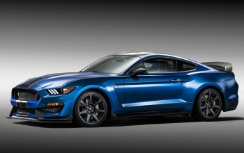 gt350r,shelby