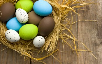 decoration,Easter,wood,eggs,colorful,spring,яйца крашеные,Весна,happy