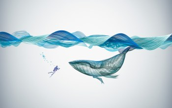 whale,underwater,illustration,creative,graphics