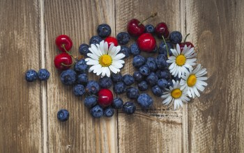 blueberries,wood,черника,chamomiles,cherries