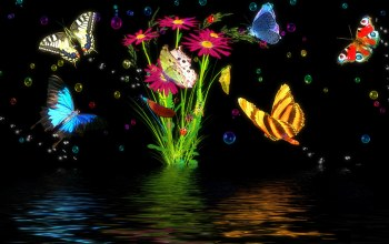 цветы,water,Butterfly,Вода,graphics