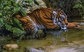 painting,Tiger