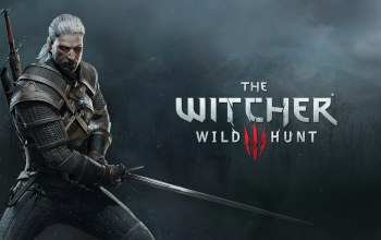 hunt,witcher,wild