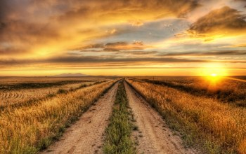 Sunset,country,field,Road