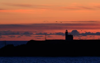 seagulls,ocean,lighthouse,Sunset