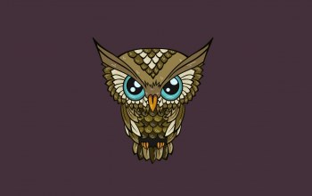 illustration,Owl