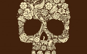 Skull,flower,illustration