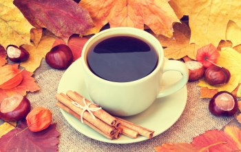 желуди,autumn,осень,fall,leaves,кофе,book,cup of coffee