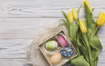 Коробка,flower,eggs,box,wood,tulips,gift,Декор