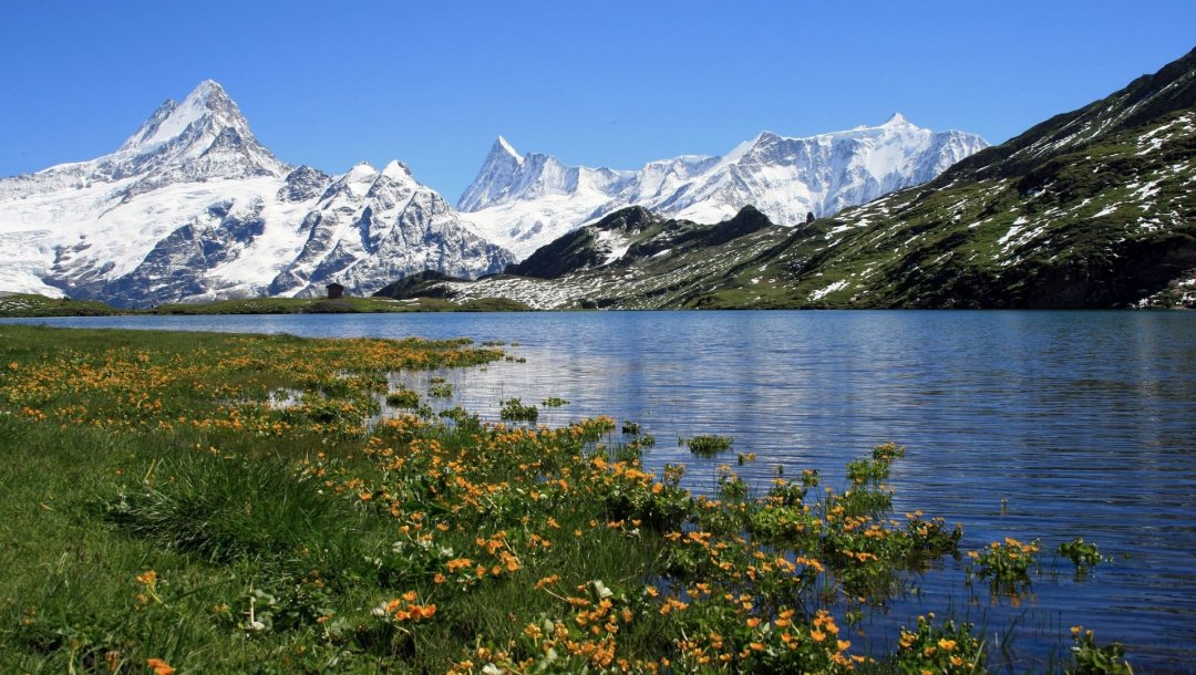 snow,the,речка,river,mountains