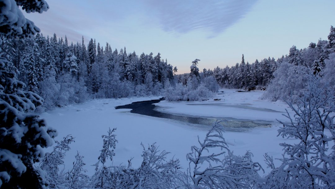 snow,the,winter,речка,river,trees