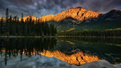 the,reflection,mountains,trees