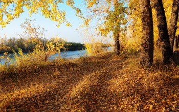 осень,river,autumn,Road