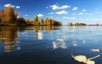 the,Вода,autumn,water,осень