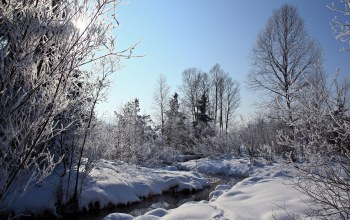 river,речка,winter,the