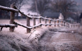 Road,иней,frost,забор,the,fence