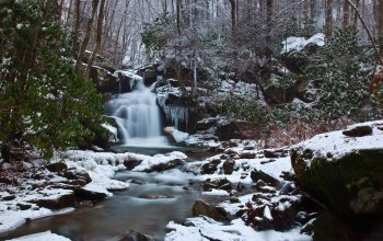 forest,водопад,waterfall,snow