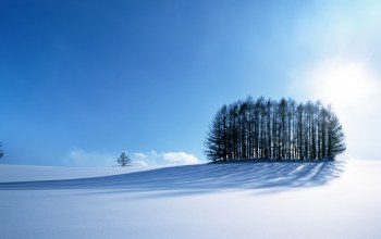 sky,frost,the,winter,snow,Мороз
