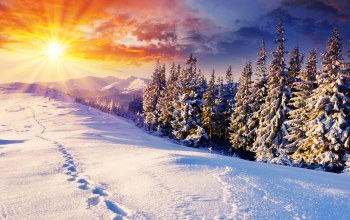 лучи,rays,snow,ate,Sunset