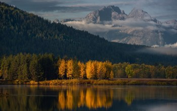 осень,autumn,mountain,the