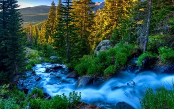river,mountains,forest