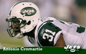 player,american,york,new,football,jets