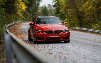 autumn,Road,Red,f80,forest,Bmw