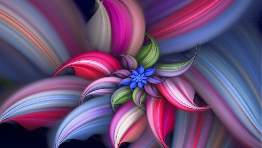 flower,Abstract,colorful