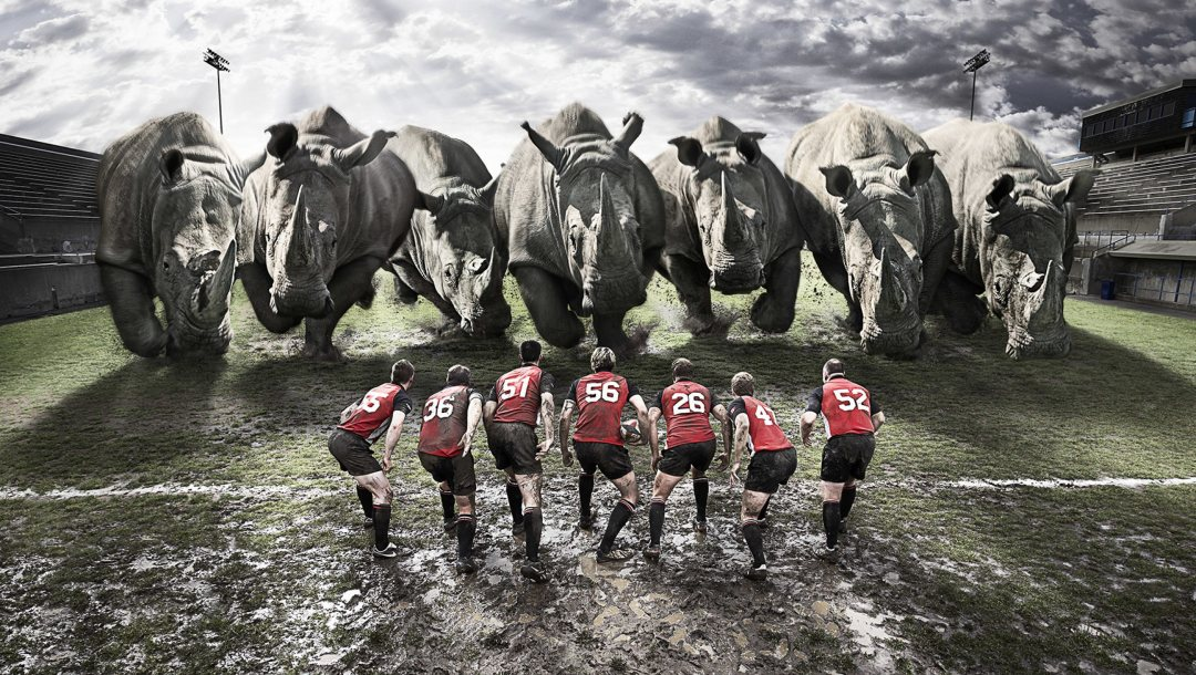 funny,Rugby,sports,teams