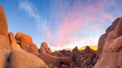 joshua,granite,boulders,park,national,tree,california