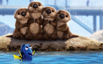finding,dory