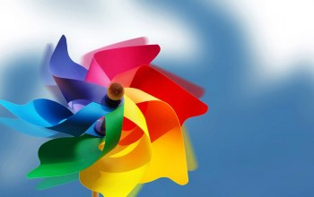 wind,flower,colorful