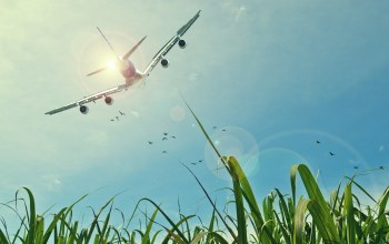 aircraft,fields,sky