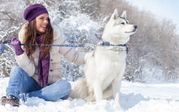 animals,winter,snow,girl,Собака