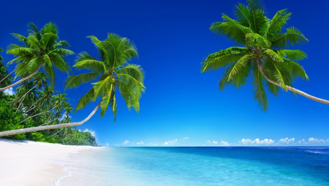 tropical,paradise,beach