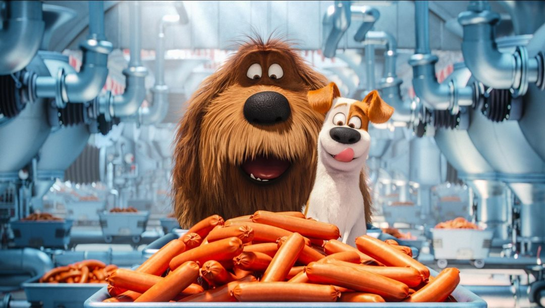 happy,cartoon,sausage party,graphic animation,subarashii,wallpaper,movie,film,max,hd,sausage,Illumination Entertainment,Louis C.K.,terrier,The secret life of pets,sugoi,comedy,happiness,official wallpaper,manufactures,cinema,food,duke