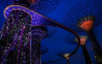 сады,конструкция,gardens by the bay,башни,ночь,дизайн