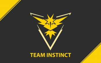 yellow,instinct,team,team