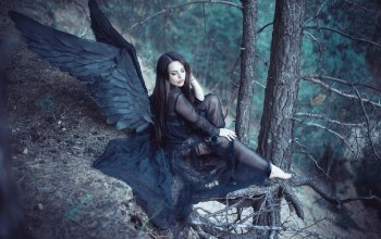 angel,forest,black wings