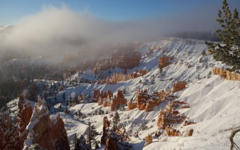 ut,Bryce,storm,winter,canyon