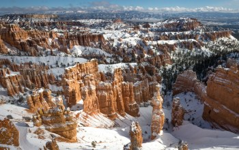 Bryce,viewed,canyon