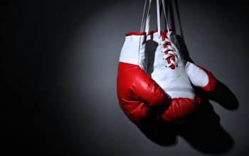 gloves,boxing