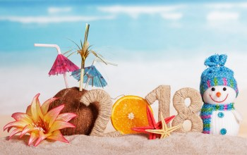 украшения,decoration,Snowman,снеговик,beach,happy,holiday celebration,2018