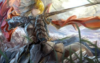 saber,fate,Stay