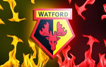 sport,Watford,wallpaper,football