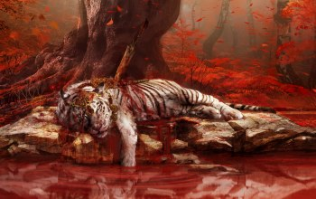 Tiger,far,dead,cry